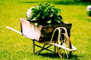 wheelbarrow promt